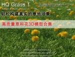 高质量草和花3D模型 /草地效果图/max模型