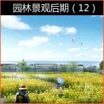 2020园林景观后期(12)